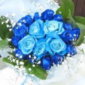 青いバラ3