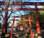桜井識子さんの神さまと繋がる神社仏閣めぐり