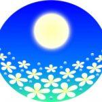 【ストロベリームーン】6月の満月で幸せを手に入れる方法